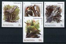 Romania 2018 MNH Masters of Camouflage Woodpeckers Nightjar 4v Set Birds Stamps