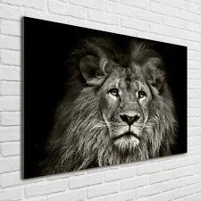 Glas-Bild Wandbilder Druck auf Glas 100x70 Deko Tiere Löwe