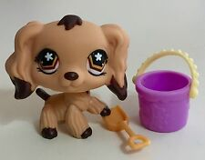 "✨Littlest Pet Shop✨ Cocker Spaniel #575 ""Dark Chocolate Dipped"" & Accessories"