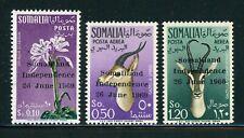 SOMALIA MNH: Scott #242/C69 Somaliland Independence OVPTs CV$88+