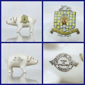 Antique Florentine Crested China the PIG that wont Go HALIFAX Gilt Porcelain