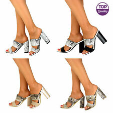 Strappy, Ankle Straps Standard (B) Block Shoes for Women