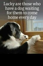 """Inspirational dog refrigerator magnet 3 1/2 """" x 4 1/2 """" Made in the Usa"""