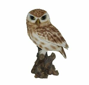Vivid Arts Little Owl Highly Detailed Garden Decoration