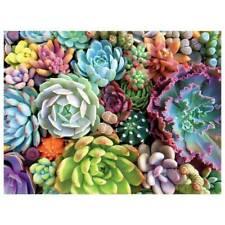 1000Pieces Succulent Spectrum Plants Puzzle Adult Children Holiday Gift Puzzles.