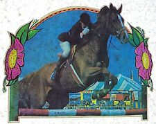 Original Horse Equestrian Iron On Transfer