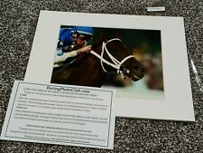 Derby Winner Smarty Jones 2004 Preakness Stakes Photo Print 11x14 Mat to Frame