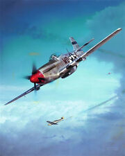 """""""Debden Eagles"""" John D. Shaw P-51 Mustang Print Co-Signed by Col Don Blakeslee"""