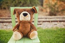 """Buddy the Soldier Bear - Large 16"""" Plush"""
