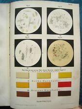 H. Frühauf Diagnostik der inneren Krankheiten 1885 MEDIZIN CHEMIE SELTEN