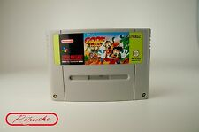 Super Nintendo *Disney´s Goof Troop* SNES Modul