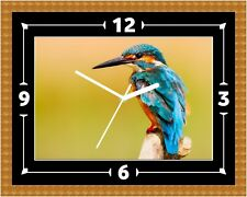 Kingfisher Bird Wall Clock Gift Present Christmas Birthday(Can Be Personalised)