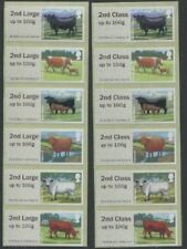 CATTLE ERROR 2nd CLASS & LARGE SWOP NCR Should be 1st POST & GO SSK set of 12