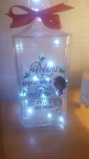Large Robin/rememberence light up bottle