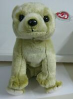 """New TY Almond the Beanie Buddy with Tags. Cuddly Almond Colored Bear. 12-14"""""""