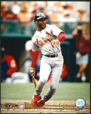 Ozzie Smith Batting Action St. Louis Cardinals 8x10 Photo With Toploader