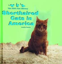 American Shorthair Cats : Everything about Purchase, Care, Nutrition, Health Car