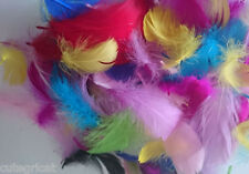 50pcs - Small Feathers -Mixed Colour Goose Craft Feathers - Best Quality