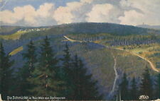 Ansichtskarte Die Schmücke Thür. Wald vom Sachsenstein um 1920 (Nr.795) -I