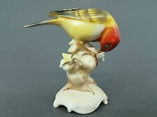 Hutschenreuther Vogel Figur, Stiglitz, Entwurf Karl Tutter ,  Höhe 12 cm