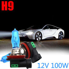 2Pair 12V H9 100W Xenon White 6000k Halogen Car Head Light Lamp Globes Bulbs Hot
