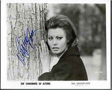 SOPHIA LOREN ORIGINAL 1968 SIGNED AUTOGRAPH PRESS PHOTO CONDEMNED OF ALTONA