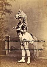 Old/Vintage Weird/Odd/Funny Sexy Burlesque Horse Head Woman Cabinet Card Photo