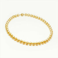 8-9mm Golden South Sea Cultured Pearl Strand Necklace 14k Yellow Gold AU585