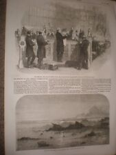 Reading of Peerage Patents House of Lords & Wreck Amelia Jersey 1856 print rf AT
