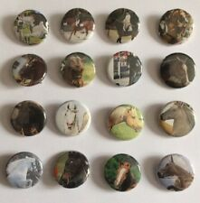 Lot 16 Badges Pin's CHEVAL Equitation HORSE Riding Jumping Photos Cavalier