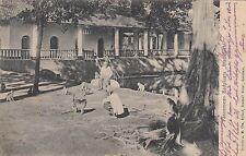 Pasuran Pasoeroean RPPC 1907 Bath Blue water monkeys East Java Indonesia 1707064