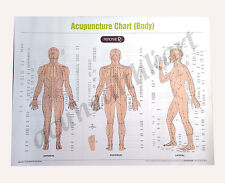 Acupuncture, Sujok Acupressure, Reflexology, Spinal, Cupping Charts (Set of 10)