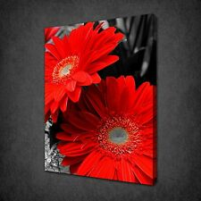 RED GERBERAS FLOWERS MODERN CANVAS WALL ART PRINT PICTURE READY TO HANG