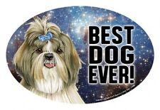 "Shih Tzu Best Dog Ever! Oval 4""x6"" Fridge Car Magnet Large Size Usa Made New"
