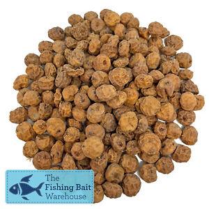 Premium Tiger Nuts 1kg-3kg (Dry)   Carp Fishing Bait, Fishing Particles