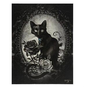 PHILOSOPHER'S FAMILIAR ALCHEMY SMALL GOTHIC CANVAS PICTURE ART PRINT BLACK CAT