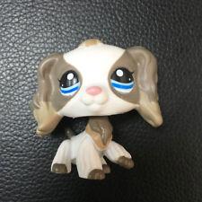 Rare Littlest Pet LPS SHOP Cocker Spaniel Dog White Grey Blue Eyes # 2254