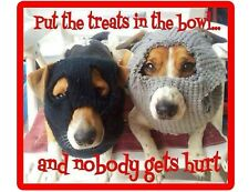 Funny Jack Russell Terrier Dog Bandits Refrigerator / Tool Box Magnet