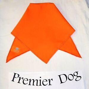 Plain Orange Dog Bandana / Scarf - 3 sizes to choose from!