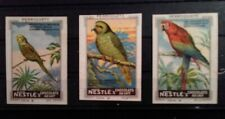Cinderella Poster Stamp Reklamemarke France Nestle Chocolate Parrots Lot of 3