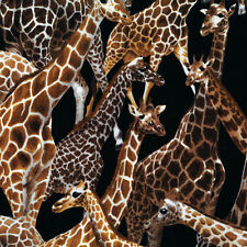 Fat Quarter Giraffe Living Wonders 100% Cotton Quilting Fabric And Larger