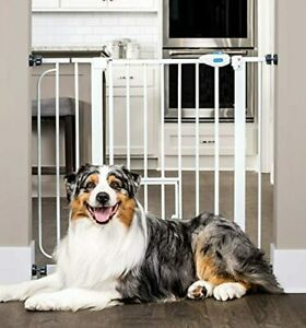 Carlson Extra Wide Walk Through Pet Gate with Small Pet Door, Includes 4-Inch Ex