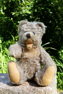 alter Steiff Teddybär Vintage 60er seltenes Sammlerstück