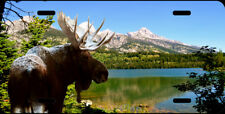 Moose grand tetons amazing colors novelty car tag  license plate 4