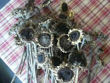 2 dried sunflowers with stalks