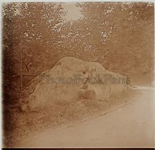Forêt de Fontainebleau Photo Stereo R3 Verre Positive Vintage 1909