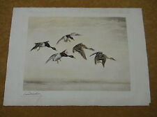 Pencil Signed Leon Danchin Etching of Mallard Ducks Landing