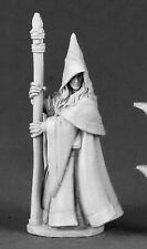 Reaper Miniatures Dark Heaven Legends Anirion Wood Elf Wizard RPR 03491