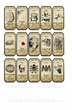 Halloween Magic apothecary label stickers set of 15 scrapbooking crafts