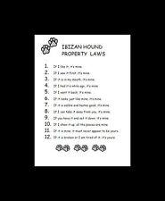 Ibizan Hound Dog Art Print - Matted - P/L